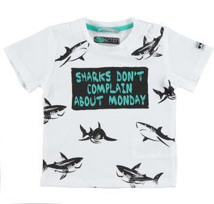 T-shirt bambino 100% cotone con squali sarabanda BIANCO-0113
