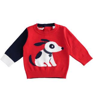 Maglione tricot girocollo 100% cotone per neonato minibanda ROSSO-2256
