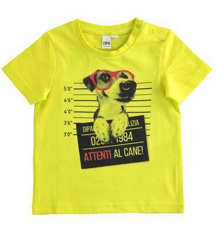 T-shirt bambino mezza manica 100% cotone con stampa fotografica ido VERDE-5243